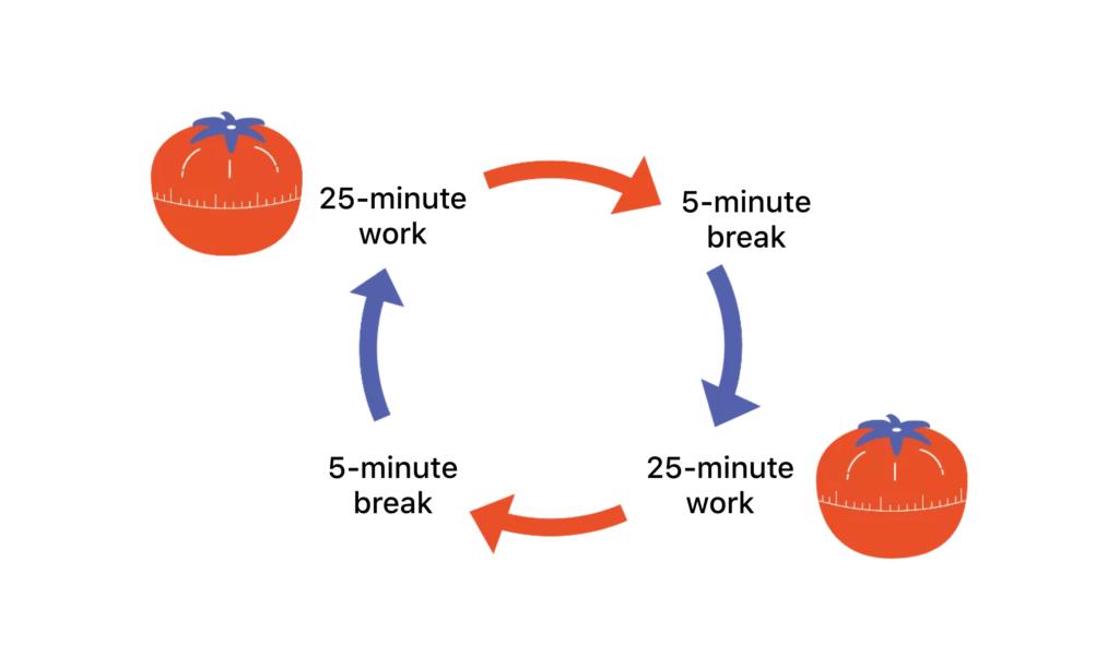 the pomodoro cycle